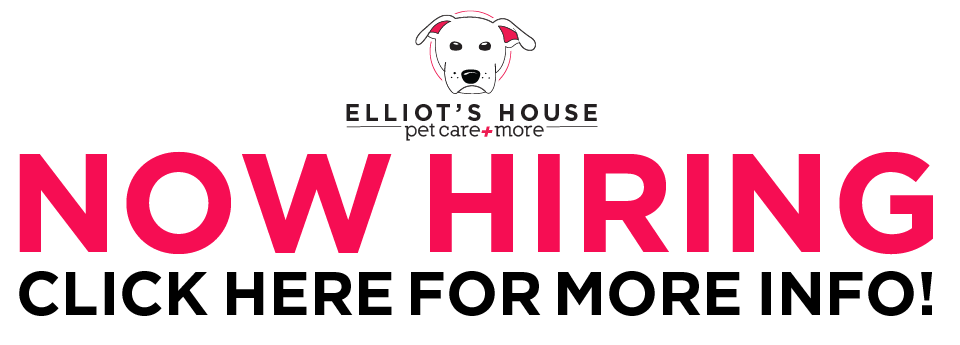 Elliot's House Is Hiring Walkers and Pet Sitters