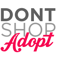 dont shop - adopt - elliots foundation
