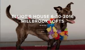 ELLIOT'S HOUSE AT MILLBROOK 6/30/2016