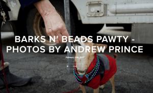 Barks n Beads Pawty 2-19
