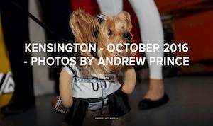 Kensington - 10-2016 - Photos by Andrew Prince