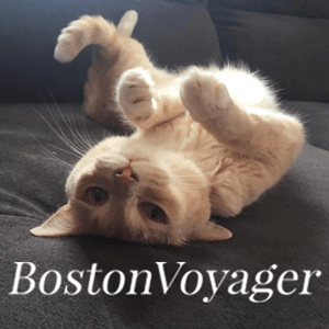Boston Voyager - read this article about our founder