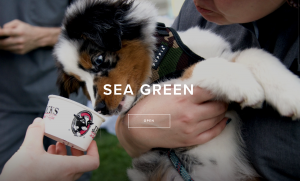 Sea Green Event September 2018