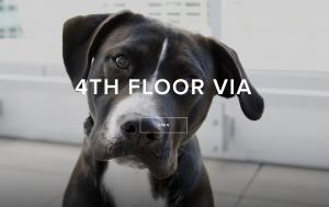 4th floor VIA event September 2018