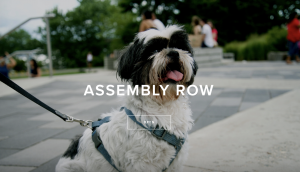 assembly row event August