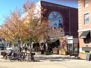 Somerville A Vibrant Neighborhood