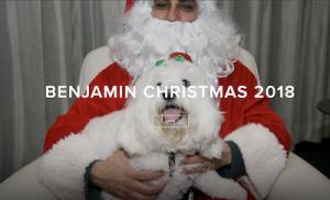 Benjamine Christmas 2018