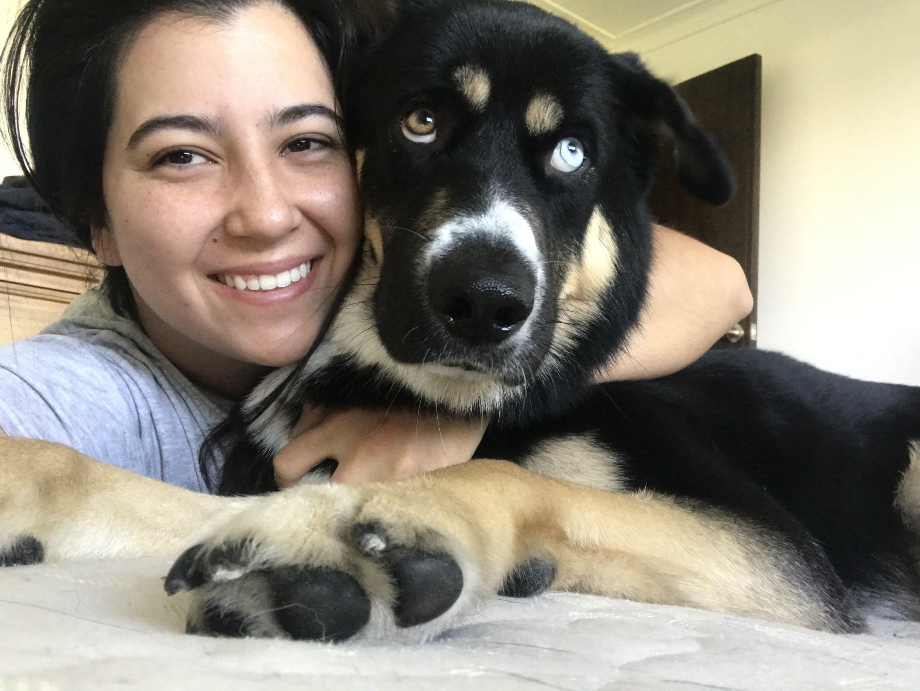 Meet your dog handler, pet sitter and doggie daycare